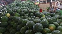 Pedagang memlilih buah semangka di pasar induk Kramat Jati, blok buah di Jakarta, Minggu (2/2/2020). Produksi lokal dinilai perlu digenjot untuk meredam impor buah tropis yang masih berlangsung sampai saat ini. (Liputan6.com/Herman Zakharia)