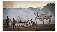 Suku Mundari (sumber: allafrica)