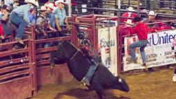 Seorang koboi mengikuti kompetisi rodeo dalam Pameran dan Rodeo Texas (North Texas Fair and Rodeo) 2020 di Denton, Texas, pada 22 Oktober 2020. Akibat pandemi COVID-19, kapasitas di arena rodeo dan gedung pameran tahun ini dibatasi masing-masing menjadi 50 dan 75 persen. (Xinhua/Dan Tian)