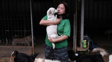 Susana Somali membawa seekor anjing yang disebut 'Putih' di Pejaten Shelter, rumah bagi lebih dari 1.400 anjing yang ia pelihara, di Jakarta, Kamis (2/7/2020). Jumlah anjing di penampungan telah meningkat sejak wabah COVID-19 dimulai di Indonesia. (AP Photo/Dita Alangkara)