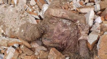 Temuan mumi di sebuah kuil di dekat ibu kota Iran, diduga sebagai jasad Reza Shah (Iran News State Agency/IRNA)