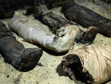 Mumi terbungkus kain linen ditemukan di ruang pemakaman di Provinsi Minya, Mesir, Sabtu (2/2). Kementerian Barang Antik Mesir mengumumkan baru menemukan tiga makam kuno dengan lebih dari 40 mumi yang terpelihara dengan baik. (AP Photo/Roger Anis)