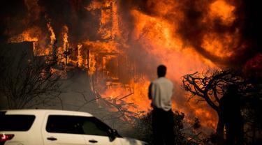 Seorang pria melihat kobaran api yang melahap sebuah rumah akibat kebakaran hutan di Ventura, California, AS (5/12). Dipicu oleh angin kencang Santa Ana, api merambat dengan cepat dan merusak sekitar 26.000 hektare. (AP Photo / Noah Berger)