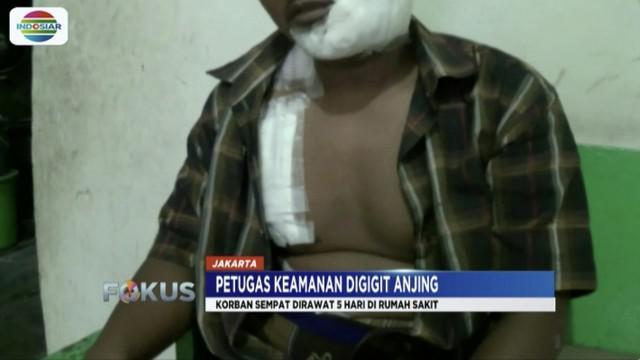 Korban penyerangan pitbull di Rajawali, Jakarta Pusat, laporkan pemilik anjing yang tak kunjung tanggung jawab.