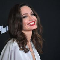 Aktris Maleficent, Angelina Jolie, miiki cirrus SR22. Ia pun punya surat izin sebagai pilot. (NEILSON BARNARD / GETTY IMAGES NORTH AMERICA / AFP)