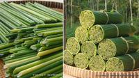 Sedotan dari rumput liar (Sumber: Ong Hut Co.)