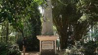 Cagar Alam Junghuhn berada di Desa Jayagiri, Kecamatan Lembang, Kabupaten Bandung Barat. (Liputan6.com/Huyogo Simbolon)