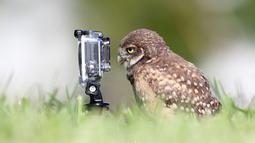 Mau selfie, tapi bagaimana cara pencetnya yah?(boredpanda.com)