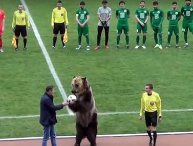 Beruang Buka Laga Sepak Bola