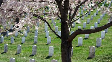 Ilustrasi meninggal, kematian, makam, kuburan