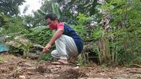 Pandemi Corona Covid-19, La Jara (54), pria asal Desa Kabawa Kole, Kabupaten Buton pilih tinggal di kebun untuk mengisolasi diri sejak turun dari KM Lambelu, Senin (6/4/2020).(Liputan6.com/Ahmad Akbar Fua)