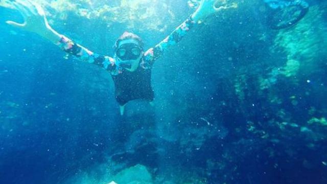 5500 Gambar Hewan Laut Yang Dilindungi Gratis