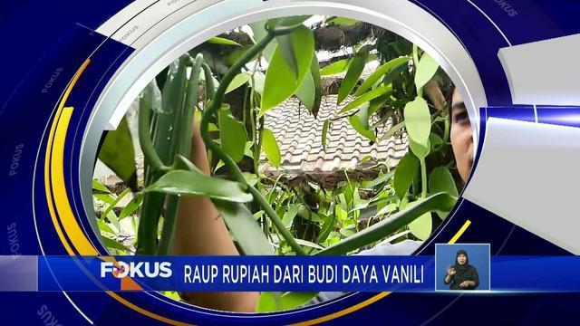 Fokus kali ini mengangkat berita-berita sebagai berikut, Diduga Kerap Mangsa Ternak, Piton Ditangkap,  Banjir Lahar Dingin Semeru, Sang Legenda Soto Padang.