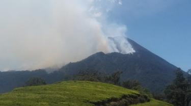 Kebakaran lereng Gunung Slamet, Banyumas, berlangsung sembilan hari antara 19-27 September 2019.  (Foto: Liputan6.com/Perhutani/Muhamad Ridlo)