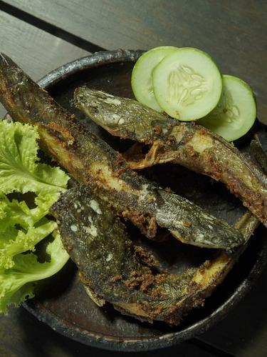 Tips Menggoreng Ikan Lele Agar Minyak Tidak Meletup Dan Lengket Lifestyle Fimela Com