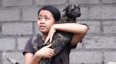 Dewi meyakini ia berutang nyawa pada seekor anjing liar yang membantunya siuman dari kondisi koma empat tahun lalu.
