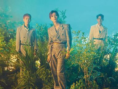 Bisa dibilang SHINee sukses mempertahankan eksistensinya di tengah persaingan ketat di industri musik k-pop. Bahkan mereka baru saja merayakan ulang tahun debut yang ke-10. (Foto: Allkpop.com)
