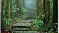 Kumano Kodo tak setenar Gunung Fuji, tapi keduanya sama-sama diakui sebagai warisan dunia oleh UNESCO. (dok. http://www.tb-kumano.jp/Dinny Mutiah)