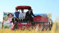 Menteri Pertanian (Mentan) Syahrul Yasin Limpo  ke Sumatera Barat untuk memantau jalannya panen raya padi di Kecamatan 2x11 Enam Lingkung, Kabupaten Padang Pariaman.