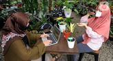 Karyawan mengupload foto tanaman hias untuk dipasarkan secara online di Titik Hijau, Bojongsari, Depok, Jawa Barat, Senin (26/10/2020). Pada masa pandemi COVID-19, penjualan tanaman hias secara online meningkat hingga 100 persen dibandingkan offline. (merdeka.com/Arie Basuki)