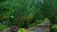 Ilustrasi Taman di Surabaya, Jawa Timur (Foto:Liputan6.com/Dian Kurniawan)