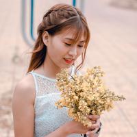 ilustrasi shio/copyright Pexels/Zun Zun