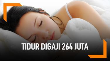 Wow, Digaji Rp 264 Juta Untuk Tidur-Tiduran 2 Bulan