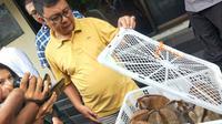 Unit Subdit IV Direktorat Kriminal Khusus (Dirkrimsus) Polda Sumsel mengamankan 8 ekor Kukang Sumatera dari salah satu penjual di Pasar Burung Kota Palembang (Liputan6.com / Nefri Inge)