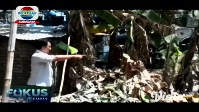 Warga Desa Sekarkurung, Kecamatan Kebomas, Kabupaten Gresik, dikagetkan dengan ada semburan lumpur, bercampur gas, yang tiba-tiba muncul di sebuah lahan penyimpanan besi tua.