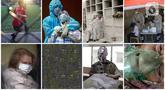 Foto kombinasi yang dibuat pada 29 September 2020 ini menunjukkan kondisi pandemi COVID-19 dunia. (AP Photo/Kathy Willens/Anupam Nath/Silvia Izquierdo/Daniel Cole/Dmitri Lovetsky/Rebecca Blackwell/Natacha Pisarenko/Evgeniy Maloletka)