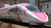 Perusahaan kereta api berharap desain kereta yang mencolok akan menarik wisatawan. (AFP)