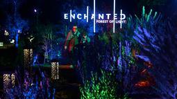 """Orang-orang mengunjungi """"Hutan Bercahaya"""" di Taman Descanso, Los Angeles, Senin (17/12). Pohon-pohon dan tumbuhan di Taman Descanso dihiasi oleh instalasi lampu yang dibuat dapat berganti warna. (Frederic J. BROWN / AFP)"""