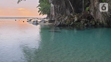 Mengintip Keindahan Sungai Terpendek Dunia yang Ada di Sulawesi