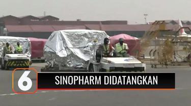 Pemerintah Indonesia kembali mendatangkan 500 ribu dosis vaksin Sinopharm dari Tiongkok. Kedatangan vaksin Covid-19 ini akan menambah pasokan untuk pelaksanaan program Vaksinasi Gotong Royong.