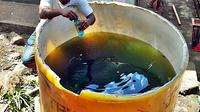 Tempat penampungan air yang digunakan guru untuk menghukum para siswanya. Para siswa yang tidak mengerjakan PR dihukum meminum air dalam penampungan. (Liputan6.com/ Ola Keda)