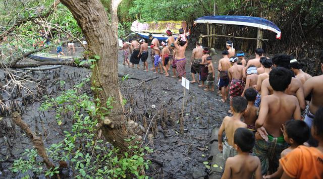 Warga Bali berjalan bersama menuju hutan manggrove untuk mandi lumpur tradisional atau yang dikenal sebagai Mebuug-buugan di desa Kedonganan, Bali (18/3). (AFP/Sony Tumbelaka)