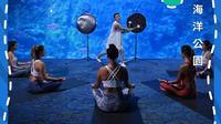 Ocean Park Hong Kong mempersembahkan yoga akuarium bagi pengunjung (Dok.Instagram/@hkoceanpark/https://www.instagram.com/p/CFwe-MEHGxg/Komarudin)
