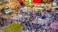 Setelah Times Square, Paris, Amsterdam, Melbourne, Shanghai, giliran persimpangan Shibuya, Jepang, yang dibalut brand Wonderful Indonesia.