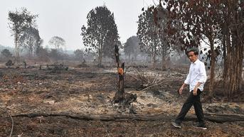 Di Sidang Umum PBB, Jokowi Sebut Kebakaran Hutan di Indonesia Turun 82 Persen pada 2020