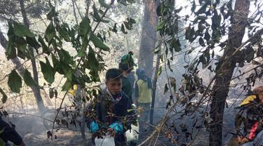 Kebakaran di Gunung Bawakaraeng