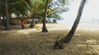 Pantai Cemara Wakatobi yang berada di Kelurahan Waha, Wangi-wangi.(Liputan6.com/Ahmad Akbar Fua)