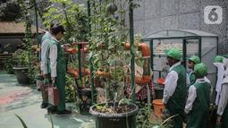 Sejumlah murid SD Laboratorium Jakarta melihat tanaman hidroponik di Balaikota Farm, Jakarta, Selasa (15/10/2019). Kegiatan ini juga untuk memberikan pengetahuan dan pengalaman sejak dini cara bercocok tanam di lahan yang sempit di perkotaan.  (Liputan6.com/Faizal Fanani)