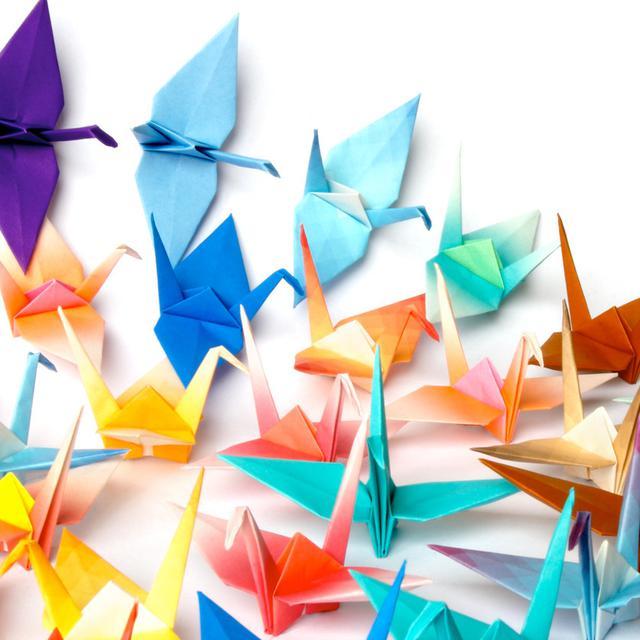 Cara Membuat Burung Dari Kertas Origami Mudah Dan Seru Citizen6 Liputan6 Com