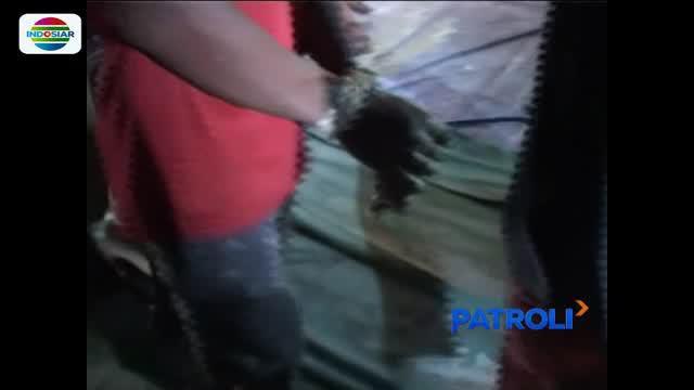 Para pelaku memaksa masuk rumah korban yang terkunci dan memperkosa korban saat sedang terlelap tidur.