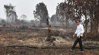 Presiden Joko Widodo atau Jokowi memeriksa kerusakan akibat kebakaran hutan dan lahan (karhutla) di Pekanbaru, Riau, Selasa (17/9/2019). Tanpa mengenakan masker, Jokowi turun langsung ke lahan gambut yang sudah habis terbakar. (Handout/Indonesian Presidential Palace/AFP)