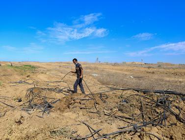 Kondisi Lahan Pertanian Petani Palestina Setelah Dirusak Tentara Israel