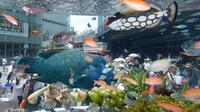 Pengunjung melihat ikan Napoleon yang berada dalam akuarium saat pameran Sony Aquarium 2017 di Tokyo (31/7). Ikan ini diangkut dari perarian pulau selatan Jepang di Okinawa. (AFP Photo/Akuhiro Nogi)