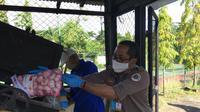 Karantina Pertanian Makassar  memusnahkan 21 jenis media pembawa hama penyakit berupa ratusan kilogram Organisme Pengganggu Tumbuhan Karantina (OPTK). (Dok Kementan)