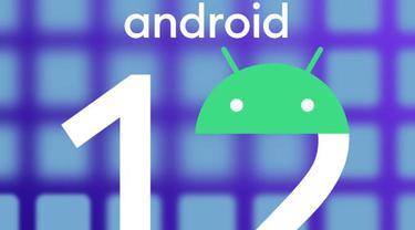Ilustrasi Android 12. Dok: androidpolice.com