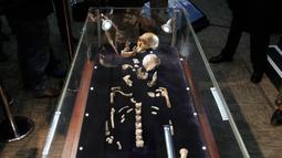 Fosil spesies Homo Naledi Hominin dipamerkan di Johannesburg, Afsel, Selasa (9/5). Tulang belulang tersebut pertama kali ditemukan pada 2013 oleh ilmuwan Universitas Witwatersrand di Cradle of Humankind, situs warisan dunia milik UNESCO.(AFP/GULSHAN KHAN)